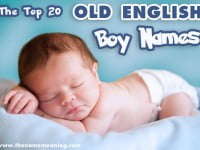 Top 20 Old English Boy Names for Baby
