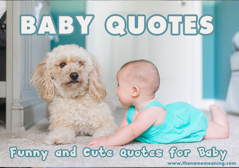 Baby Quotes – Funny and Cute Quotes for Baby - The Name Meaning